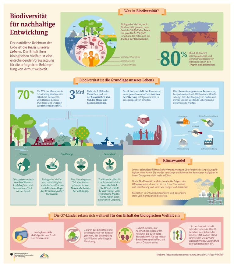 Biodiversität Infografik