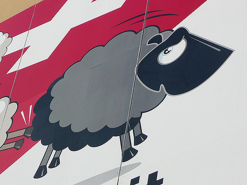 Dürfen erstmal drinnen bleiben: die vermeintlichen schwarzen Schafe
